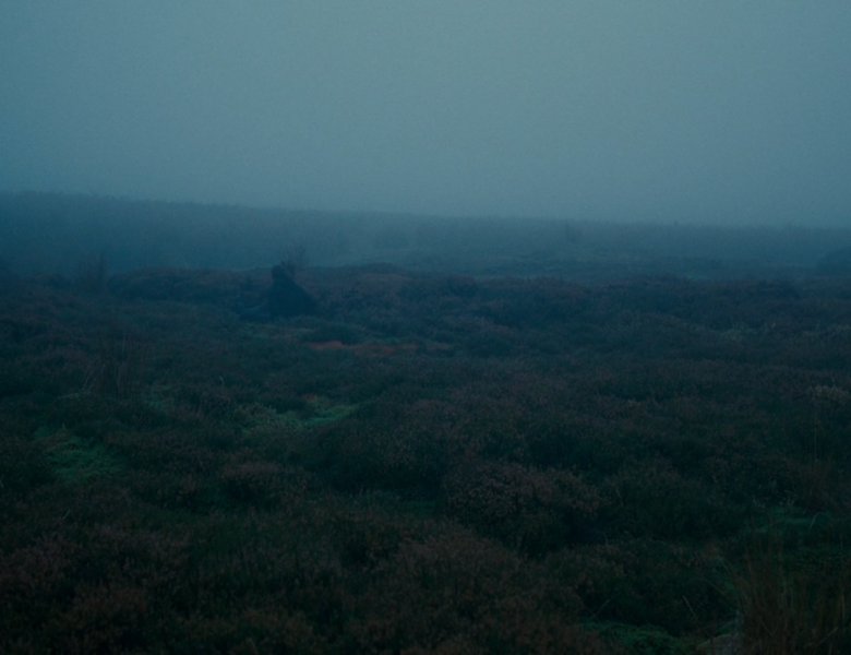 Wuthering Heights (2011): the uncanny connection with nature